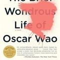 Dominikai Köztársaság. Karneváli forgatag, megsemmisítő erővel (Junot Díaz: The Brief Wondrous Life of Oscar Wao)