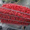 Chilifarm a jövőből