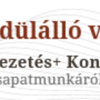 John Maxwell novemberben Magyarországon ad elő!