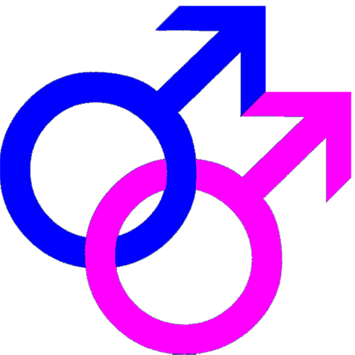 Gay_sign.png