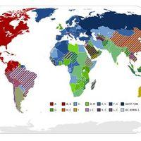 Konnektorok a világban