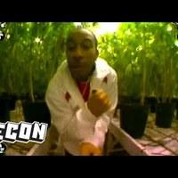 Ludacris-Blueberry Yum Yum