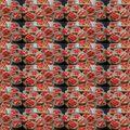 Aprósütik szezonja elstartolt: bonbonméretű marcipánkrémes korongok