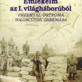 Mészáros Vilmos: Emlékeim az I. világháborúból