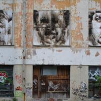 Molotov-koktéllal festett képek