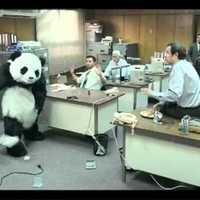 Soha ne mondj nemet a Pandának..