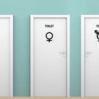 Melyik WC-be járjon a transznemű iskolás?