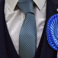 A konzervatív politikai rend értelme