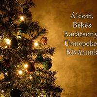 Áldott, Békés Karácsonyi Ünnepeket Kívánunk!