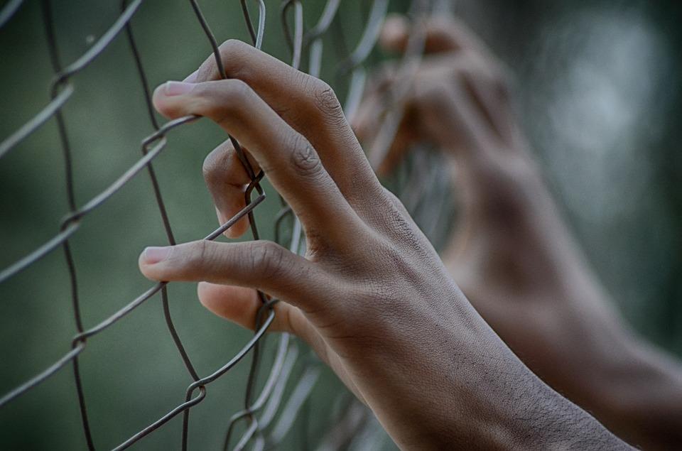 fence-2163951_960_720.jpg