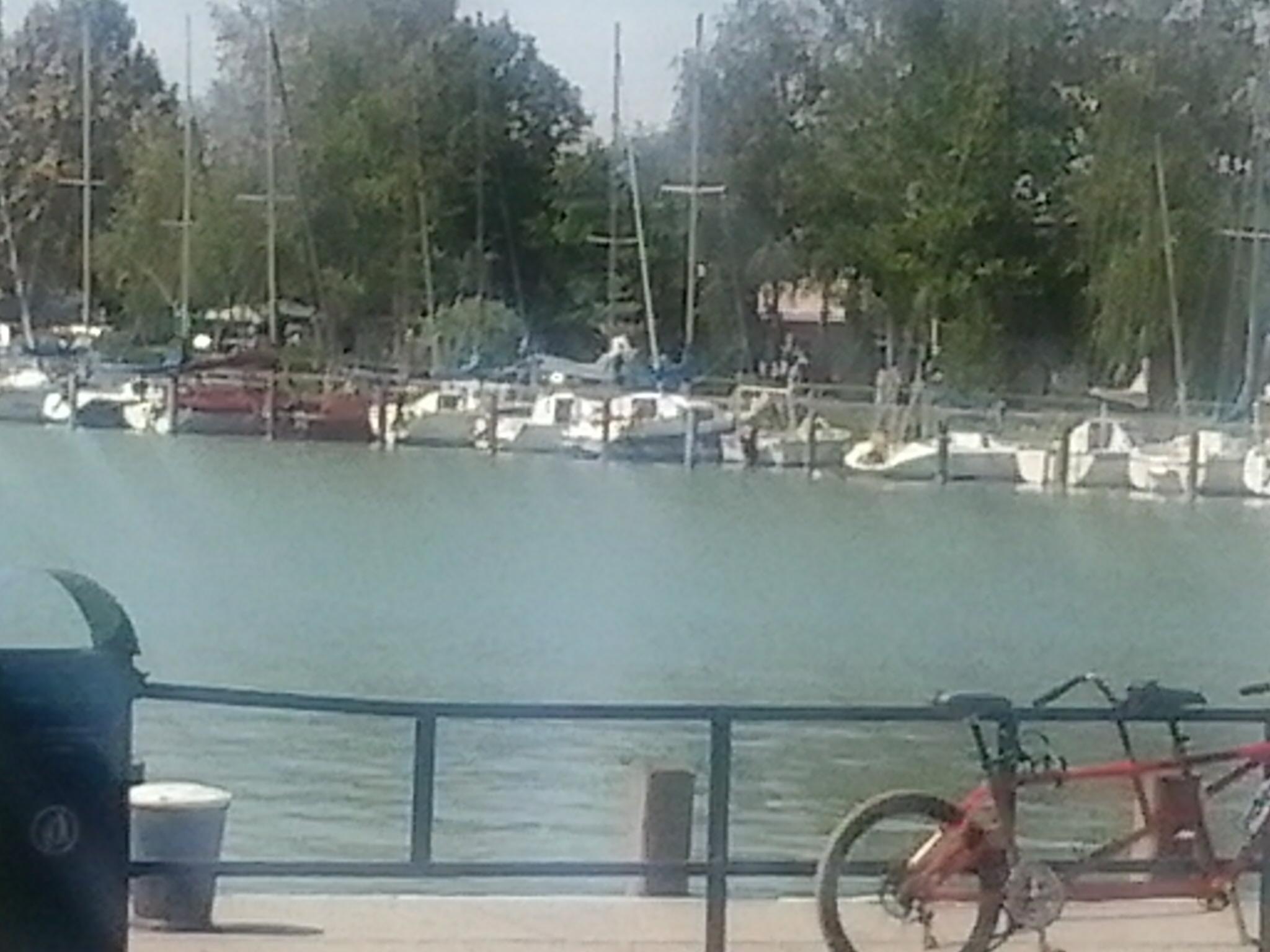 A fonyódi kikötőben augusztus 22-én.jpg