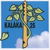 A sorozat 5. része: Kaláka - 25 (1994)