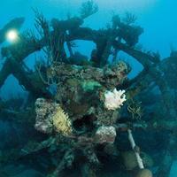 74. Mary Celestia - Bermuda