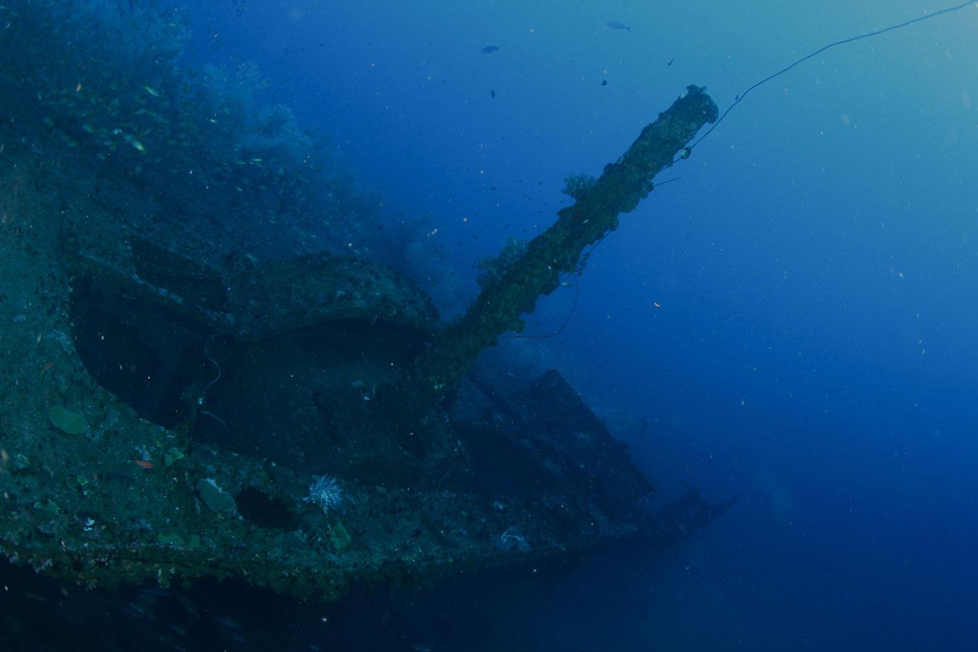 Canon _ HMS HERMES.jpg