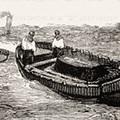 Bicskei János temetése
