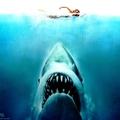 Egy híres halas plakát - ami félelmet szült - Cápa