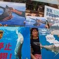 Képes a cápauszony-tilalom megvédeni a cápákat?