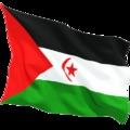 Petíció: Álljon el az EU az illegálisan megszállt Nyugat-Szahara halászati tervétől!!