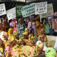 Guinea part menti közösségeit az illegális halászat veszélyezteti