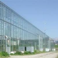 Egy fenntartható haltenyésztési modell Svájcból