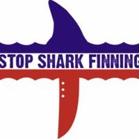 Chile betiltja a cápauszony forgalmazást!
