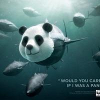 Egy zseniális plakát a WWF-től