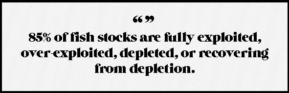 85fish stocks.png