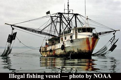 Illegal-fishing-vessel-—-photo-by-NOAA-500x333.jpg