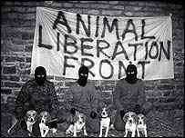 animal liberation front.jpg