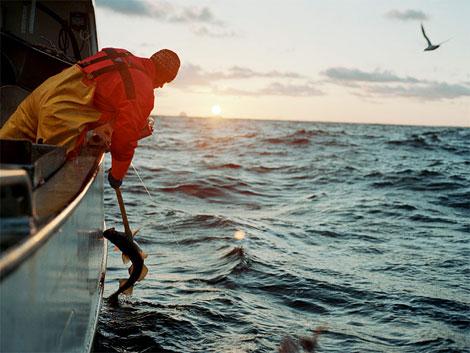 high_seas.jpg