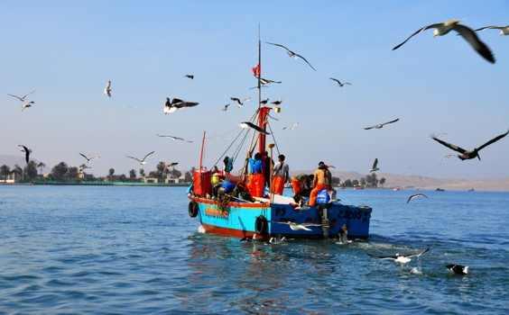 paracas-bote.jpg