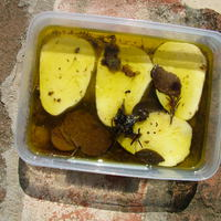 Szarvasgombás olajban pácolt mozzarella - Mozzarella marinate in truffle oil