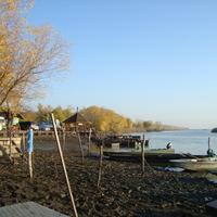 Tisza-tó vízszintcsökkentése