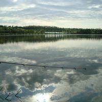 Érdi horgász
