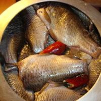 Olajos hal kárászból