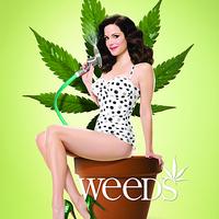 A Weeds 4. évadáról – spoiler mentesen