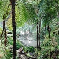 Üdv a Paradicsomban! - Caldeira Velha, a tömény egzotikum, amiben egész évben meg lehet fürödni