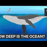 Ennyire érdekes magyarázó videót az óceánról még nem láttam