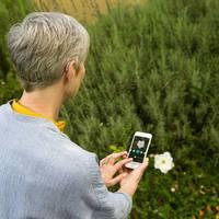 Úttörő technológiák Dániából: A Widex Beyond