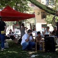 Platán, piknik, rendszerváltás