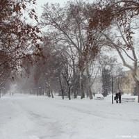 Amikor épp nem volt annyira melegem, mint most: Szeged, hóban