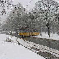 Debreceni villamosok a fehérségben