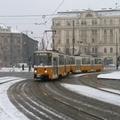 Sárga villamosok fehér alapon: 2009 eleje