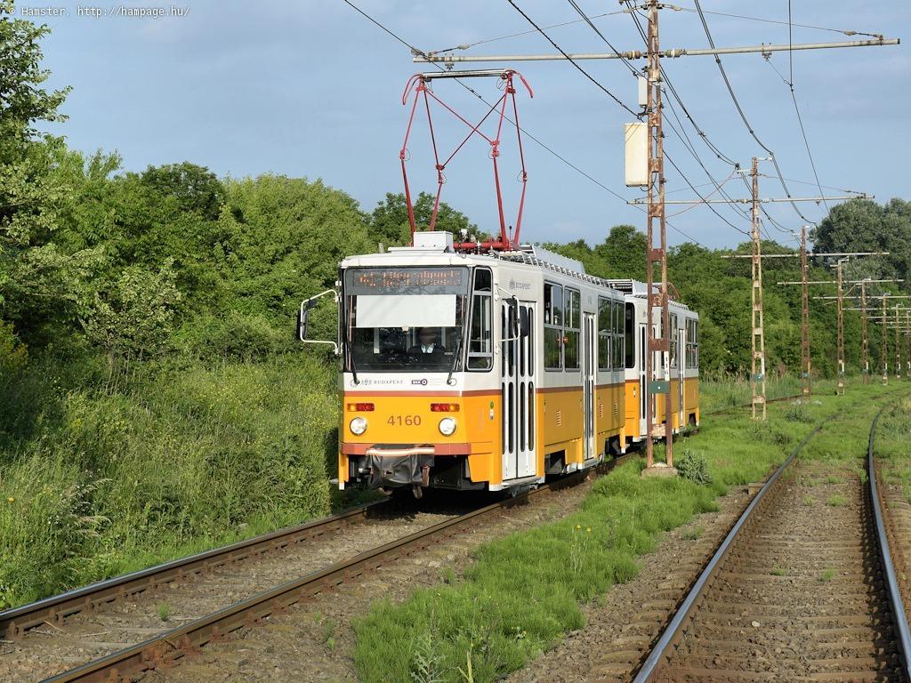 dsc_5205-2.jpg