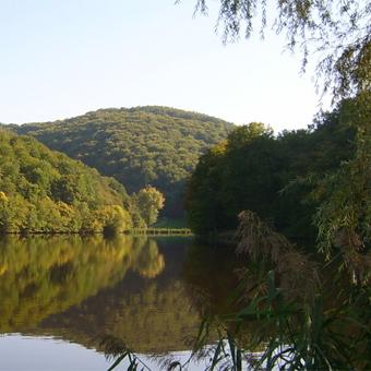 A hangonyi tó látképe