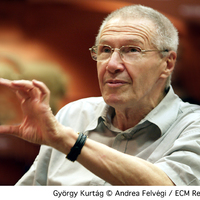 Tanáregyéniségek és emigráció - Schiff útja külföldre