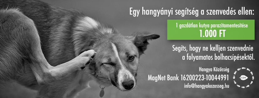 magyar_hangya_kozosseg_eng_felhivas_facebook_0919.jpg