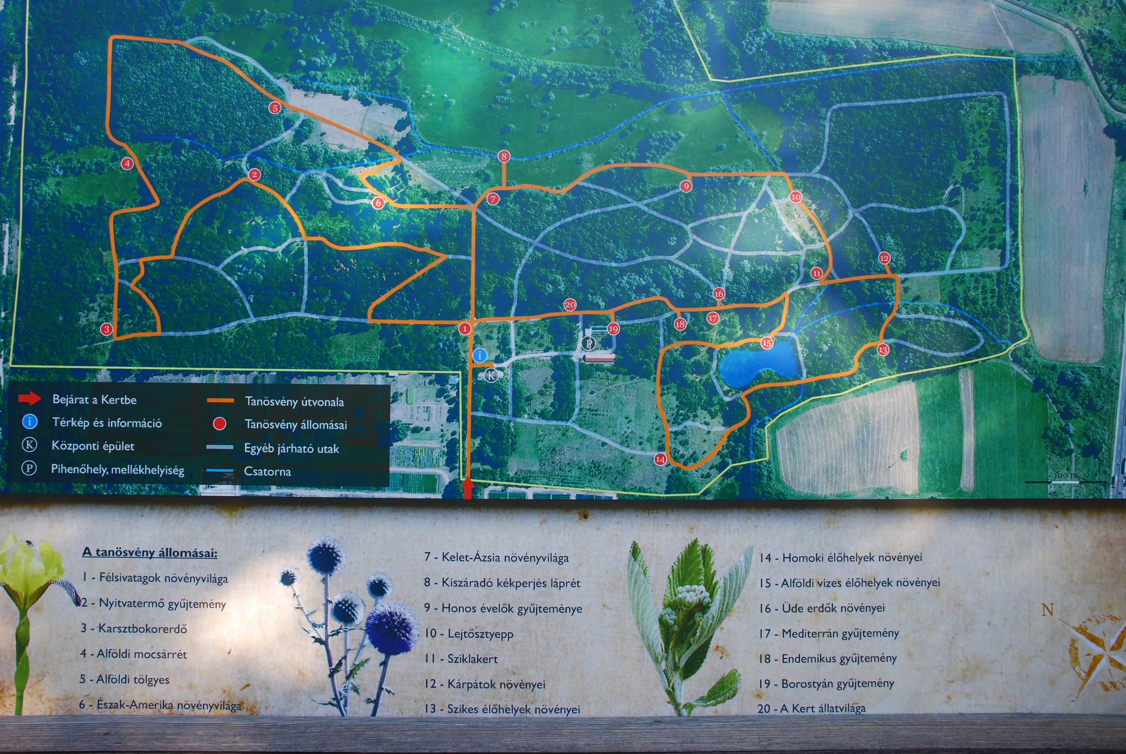 soroksári botanikus kert térkép Soroksári Botanikus Kert   Haraszti Anyukák