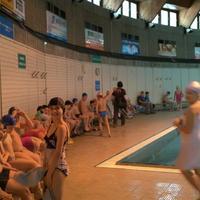 Galéria - Úszás