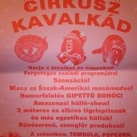 Kedvezményes iskolai jegyek a cirkuszi előadásra